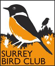 Surrey Bird Club | The Home of Bird Watching in Surrey